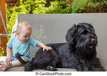 Cute baby boy is sitting on a swing next to black dog.