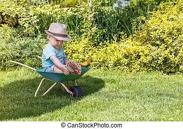 Cute baby boy is sitting on wheelbarrow in the garden