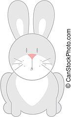 cute baby bunny
