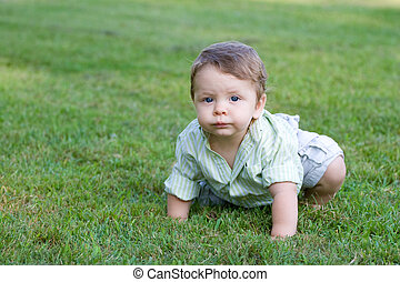 Cute Baby Crawling - Cute young baby crawling through the...
