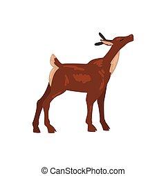 Cute Baby Deer Animal, Side View Vector Illustration
