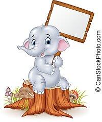 Cute baby elephant holding blank