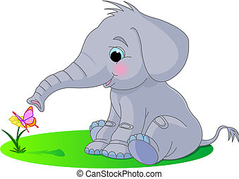 Cute baby elephant looks at the butterfly sitting on a...