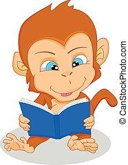 cute baby monkey reading