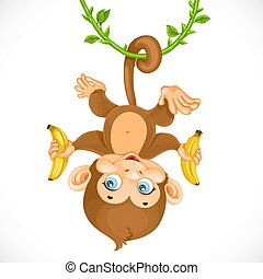 Cute baby monkey with banana hanging on the liana isolated on a white background