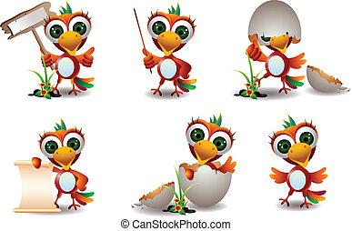 cute baby parrots cartoon set - vector illustration of cute...