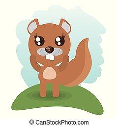 cute beaver animal wildlife