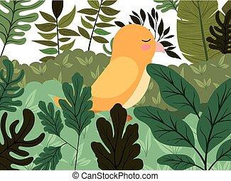 cute bird in the jungle