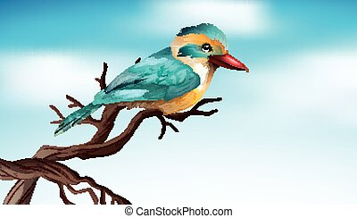 Cute bird on the wooden branch