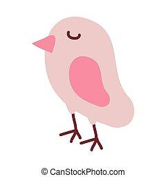 cute bird on white background