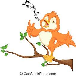 Cute bird singing