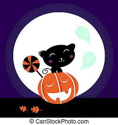 Cute Black Cat, Pumpkin head and sweet Lollipop