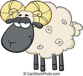 Cute Black Head Ram Sheep