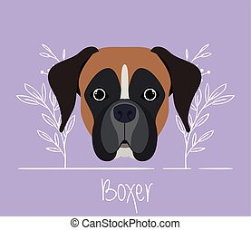 cute boxer dog pet head character