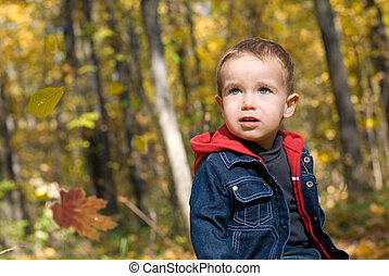 Cute boy and falling leaves in a forest