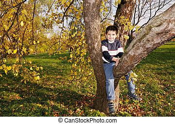 Cute boy on autumn tree