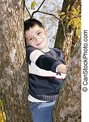 Cute boy on tree