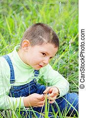 Cute boy sitting in high grass