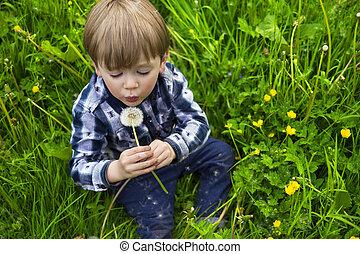 cute boy with dandelion