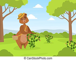 Cute Brown Bear in Straw Hat Collecting Raspberries from Bush into Wicker Basket on Summer Landscape Vector Illustration