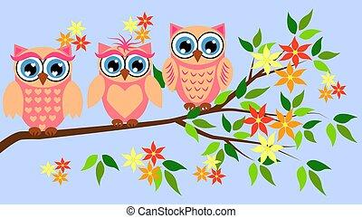 cute, brusebade, girls., owls., arrangementerne, baby pige