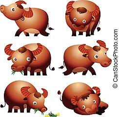 cute buffalo cartoon vectoe many actions