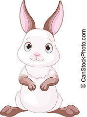 Illustration of cute little bunny
