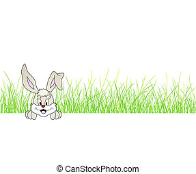 Cute bunny - rabbit in the grass - Cute smiling Easter bunny...