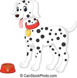 cute, cão dalmation