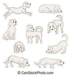 cute, cão, ilustração, poses., vetorial, vário, caricatura