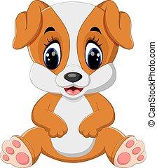 cute, cão, sentando