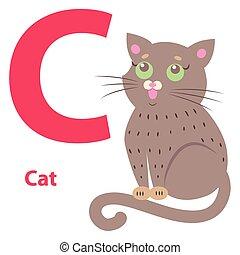 cute, c, alfabeto, ilustração, gato, letra