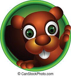 cute, cabeça, esquilo, caricatura