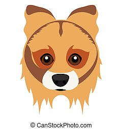 cute, cachorro collie, avatar