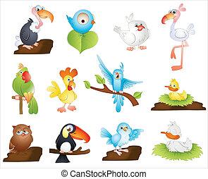 Cute Cartoon Birds