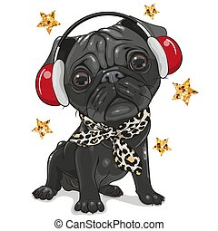Black Pug Dog with headphones on a white background