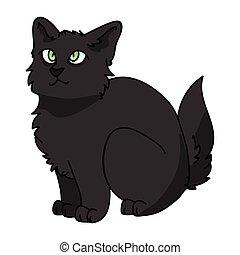 Cute cartoon Bombay kitten vector clipart. Pedigree kitty breed for cat lovers. Purebred black domestic kitten for pet parlor illustration mascot. Isolated feline housecat.