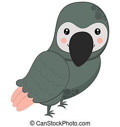 Cute cartoon character gray parrot on a white background. African bird for children's graphic design. Vector.