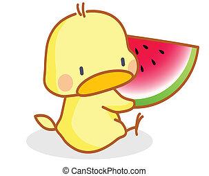 cartoon chicks eating watermelon - cute cartoon chicks...