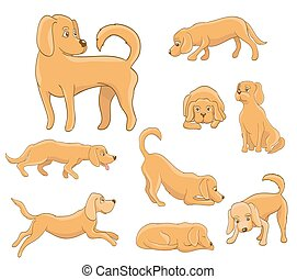 cute cartoon dog in various poses. funny pet sitting, standing, running, waiting, lying, playing,sleepy, tired. vector illustration