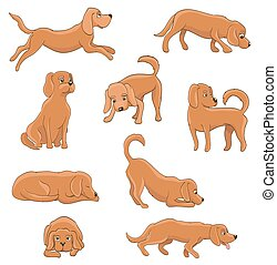 cute cartoon dog in various poses. funny pet sitting, standing, running, waiting, lying, playing, sleepy, tired. vector illustration