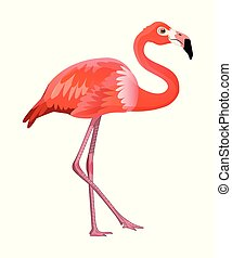 Cute cartoon flamingo isolated on a white background. Vector illustration.