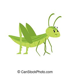 Cute cartoon green grasshopper character vector Illustration