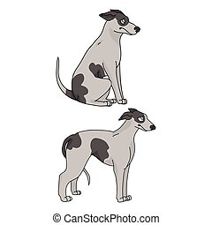Cute cartoon Greyhound dog vector clipart. Pedigree kennel doggie for pet parlor mascot. Purebred domestic sighthound puppy training for kennel club illustration. Isolated canine breed.