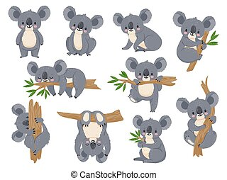 Cute cartoon koala. Lazy koalas with eucalyptus. Little funny rainforest animals. Australian bear sleeping on tropical tree vector set