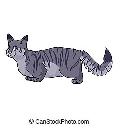 Cute cartoon munchkin cat vector clipart. Pedigree kitty breed for cat lovers. Purebred grey domestic kitten for pet parlor illustration mascot. Isolated feline housecat.