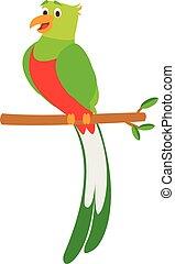 Cute cartoon quetzal vector illustration