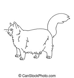 Cute cartoon ragdoll cat monochrome lineart vector clipart. Pedigree kitty breed for cat lovers. Purebred domestic cat for pet parlor illustration mascot. Isolated feline housecat.