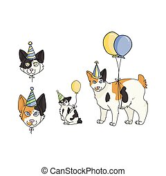 Cute cartoon ragdoll cat party set vector clipart. Pedigree kitty breed for cat lovers. Celebration for pet parlor illustration mascot. Isolated feline housecat.