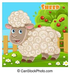 Cute cartoon sheep on a farm background